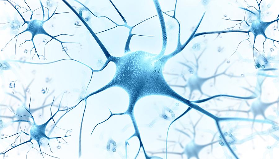 Science子刊:癌细胞吃掉自己,来度过危机,求得生存